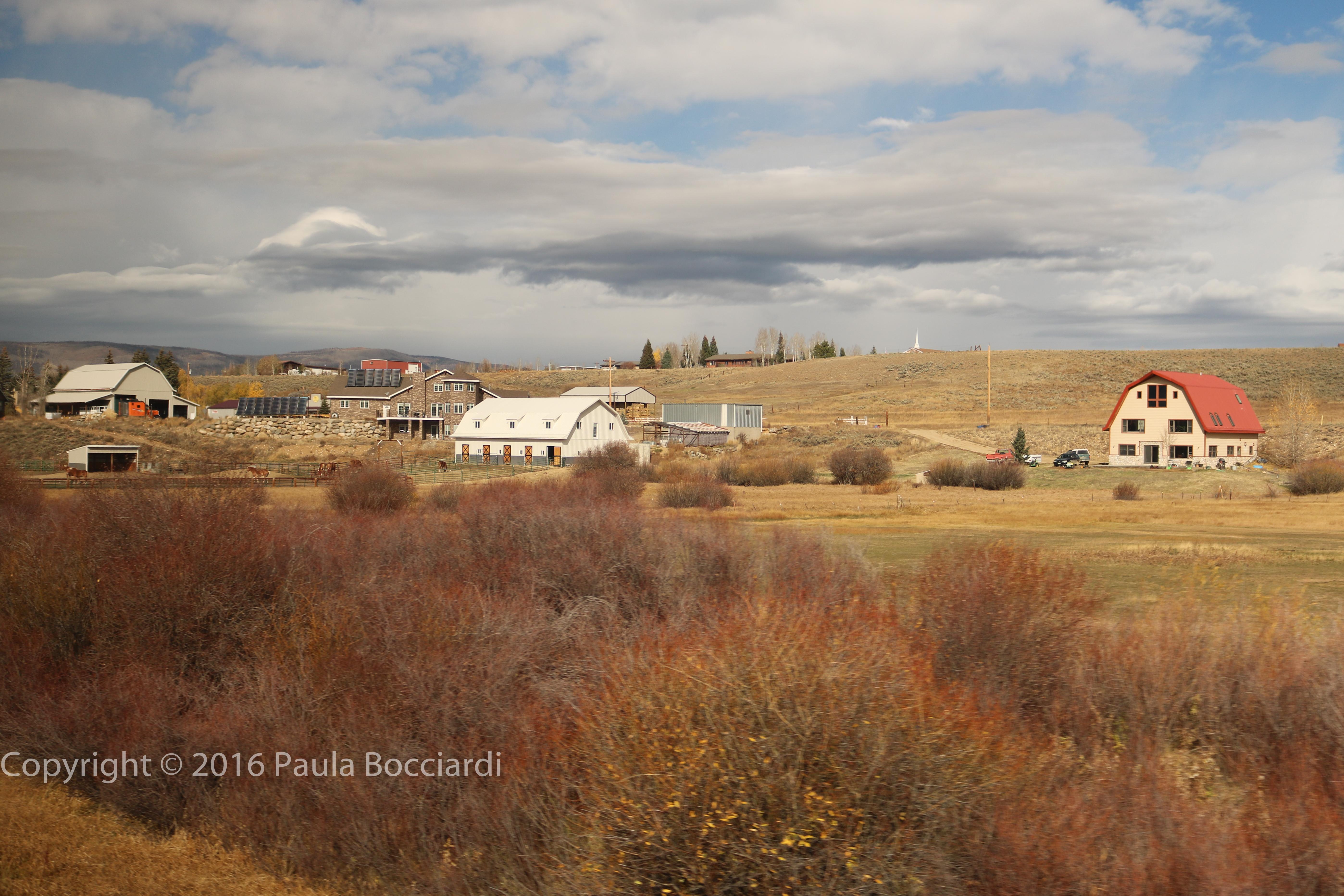 rockies_grand-county-co-15