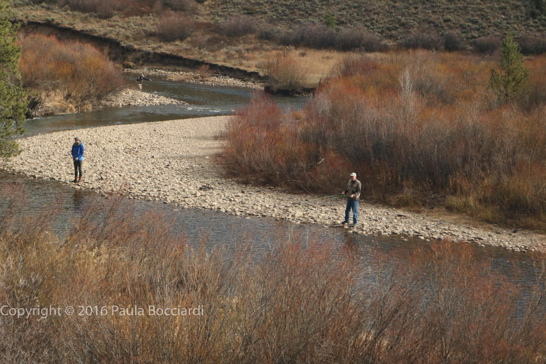 rockies_grand-county-co_colorado-river-5