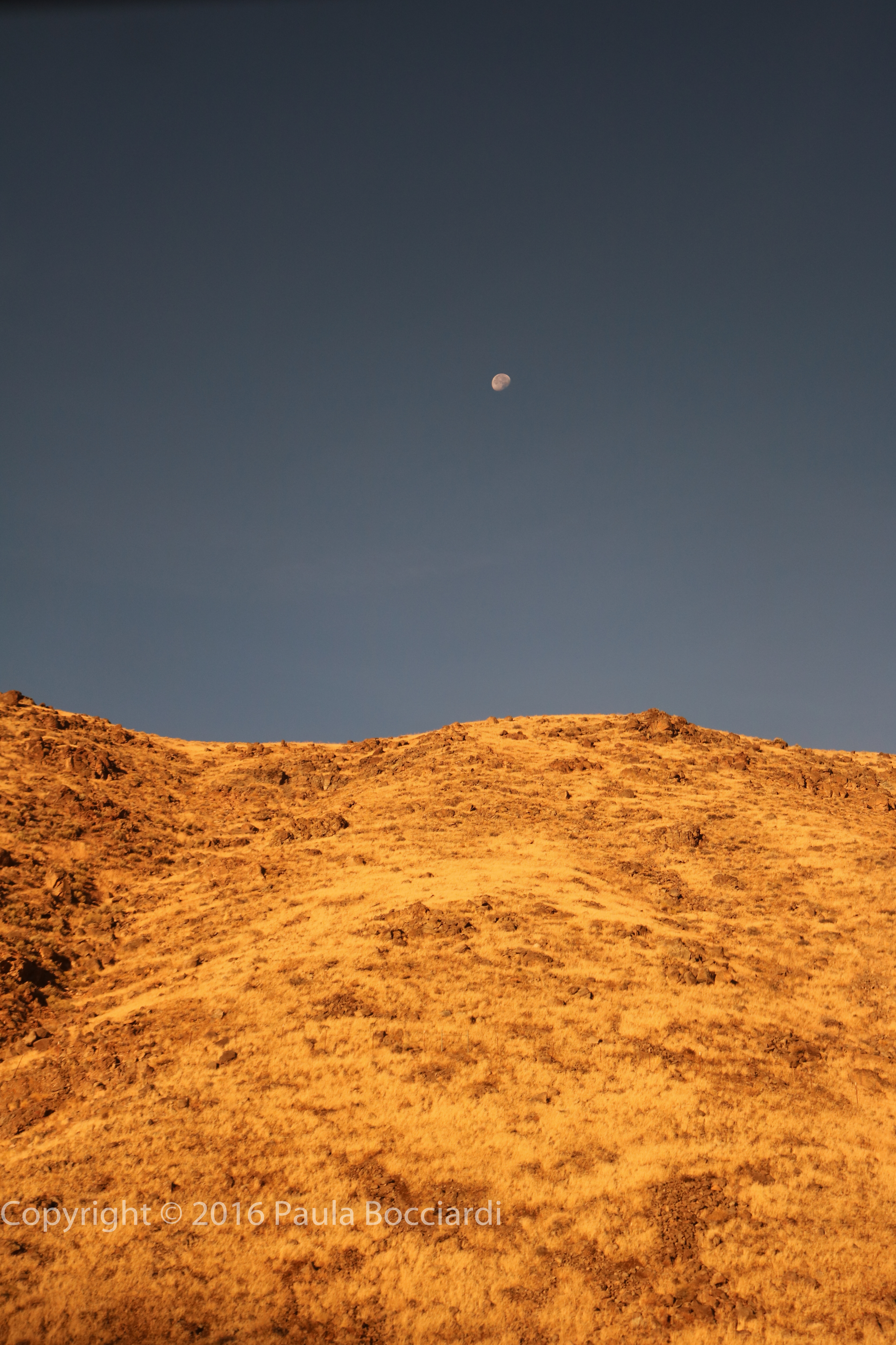 washoe-county-nv_moon