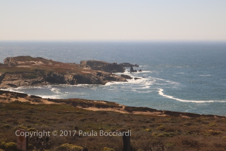 055_Coast Starlight train trip, September 2017_scenery 16