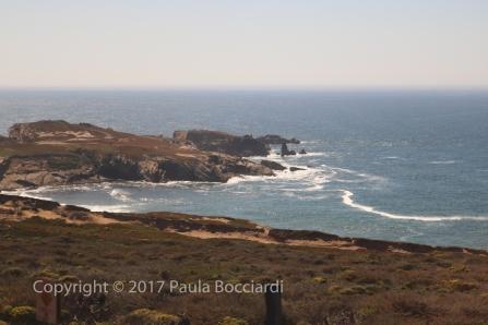 055_Coast Starlight train trip, September 2017_scenery 16