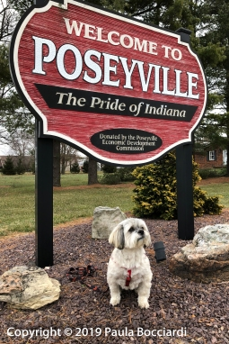 008_Poseyville, IN_Buster 2_December 17, 2017