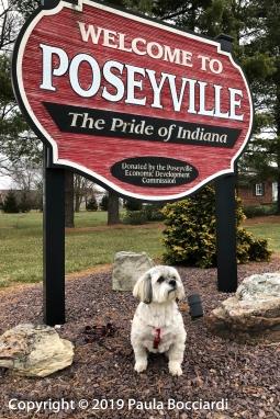 008_Poseyville, IN_Buster 2_December 17, 2017