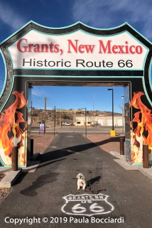 037_Grants, NM_Buster 1_December 30, 2017