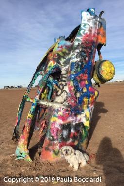 043_Cadillac Ranch, Amarillo, Texas_Buster 1