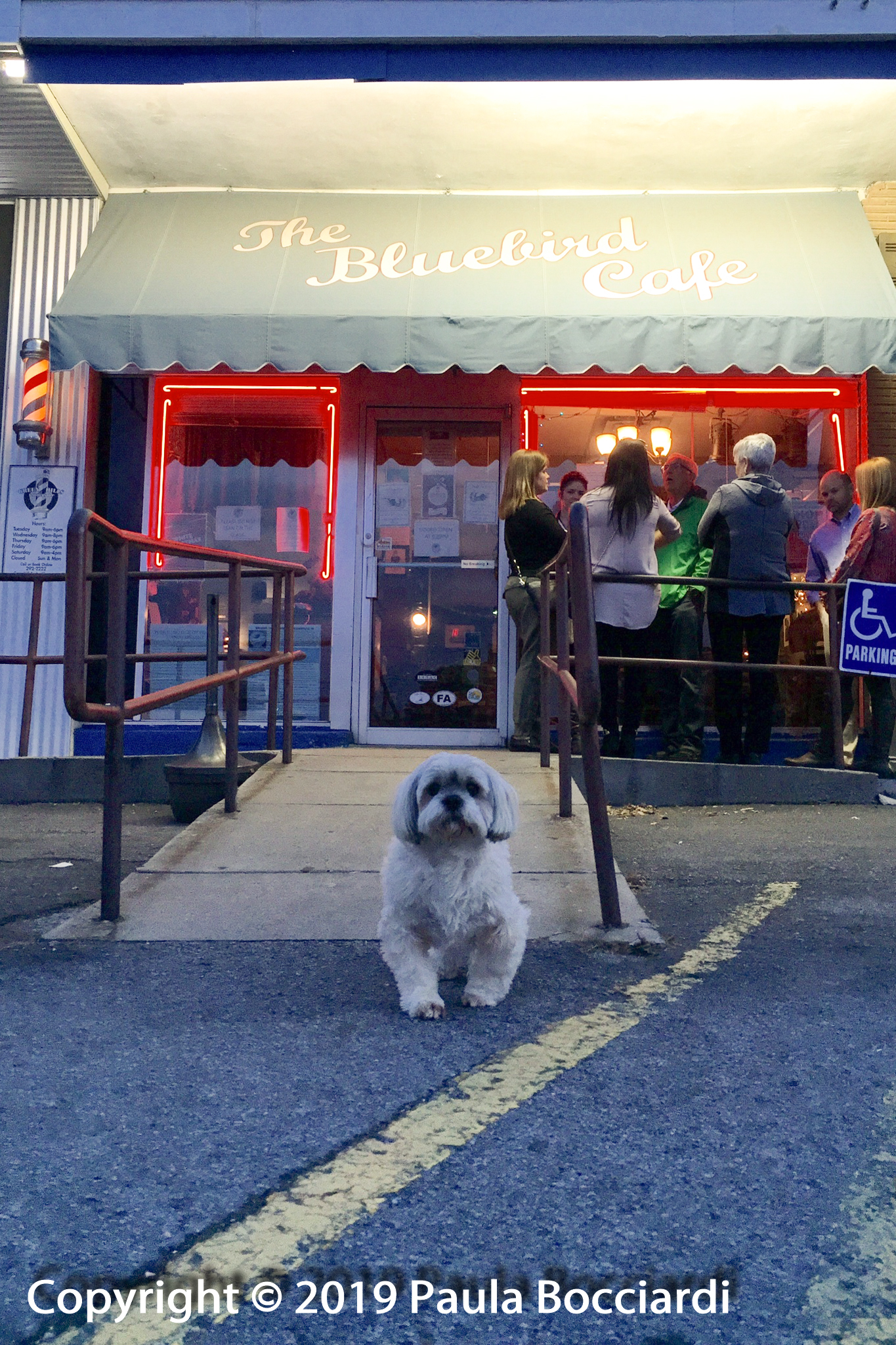 086_Bluebird Cafe, Nashville_Buster 2